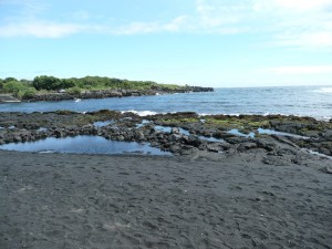 Punalu'u Beach in the Big Island