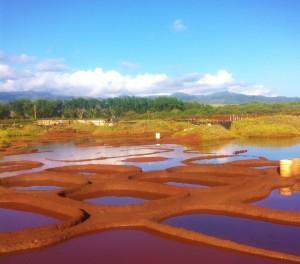 hanapepe salt beds kauai