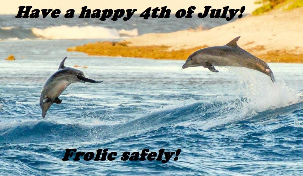 happy 4th of july-dolpins at kio ora