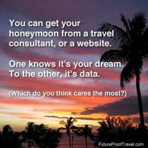 honeymoon- TA or website- dream vs data