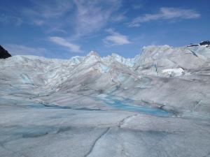 Ice fields near Juneau