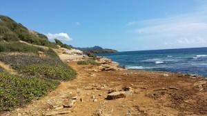 mahaulepu_trail-walk on coast-reduced