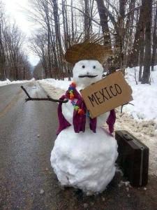 mexico or snow