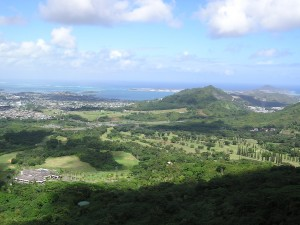 Pali Look out