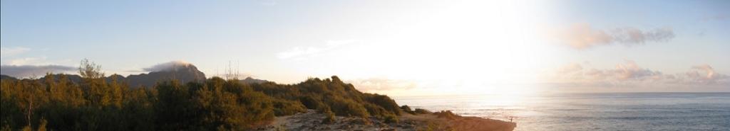 Shipwreck Beach Panorama 2.25.10[1]