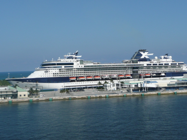 celebrity constellation in fll