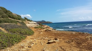 mahaulepu_trail-walk on coast-reduced