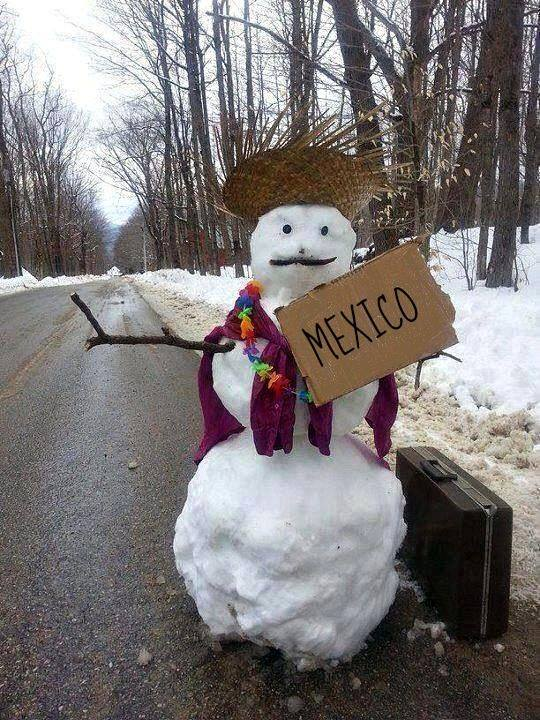 mexico or snow