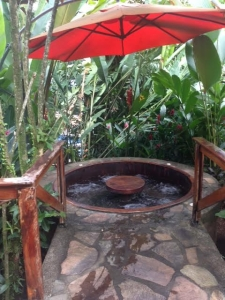 Liz and Marvin's private outdoor hot tub in Costa Rica