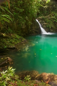 waterfall-tourism-development-company-of-trinidad-tobago