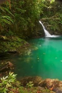 waterfall-tourism-development-company-of-trinidad-tobago